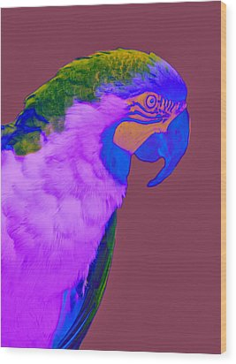 Wood Print featuring the photograph Blue And Gold Macaw Sabattier by Bill Barber