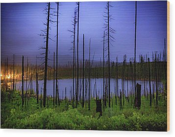 Wood Print featuring the photograph Blue And Green by Cat Connor