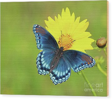 Blue And Yellow On Green Wood Print