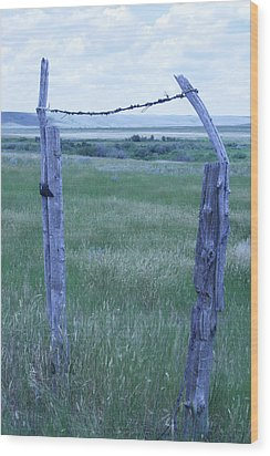 Blue Barbwire Wood Print by Mary Mikawoz