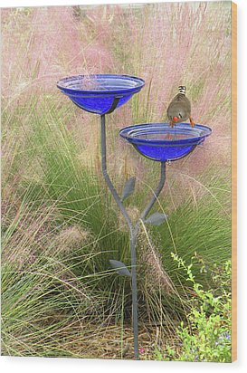 Blue Bird Bath Wood Print by Rosalie Scanlon