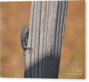Wood Print featuring the photograph Blue Bits by Al Powell Photography USA