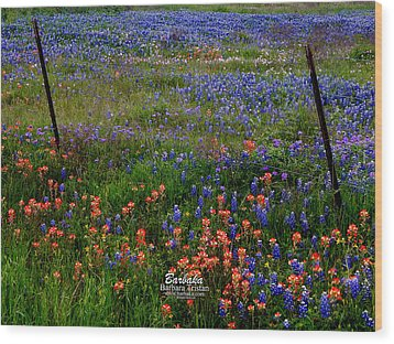 Wood Print featuring the photograph Bluebonnets #0487 by Barbara Tristan