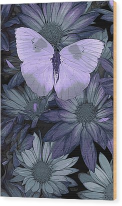 Blue Butterfly Wood Print by JQ Licensing