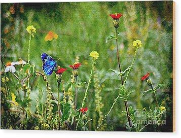 Blue Butterfly In Meadow Wood Print
