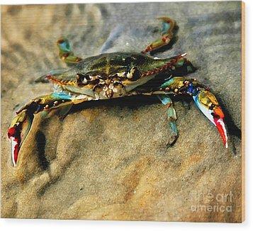 Blue Crab Wood Print by Joan McCool