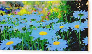 Wood Print featuring the mixed media Blue Daisy by Terence Morrissey