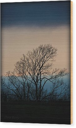Wood Print featuring the photograph Blue Dusk by Chris Berry