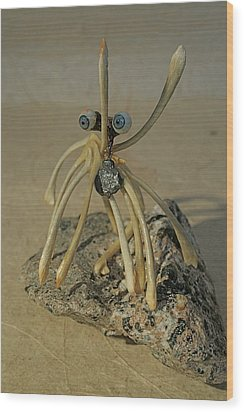 Blue Eye Spider Wood Print by Ruth Edward Anderson