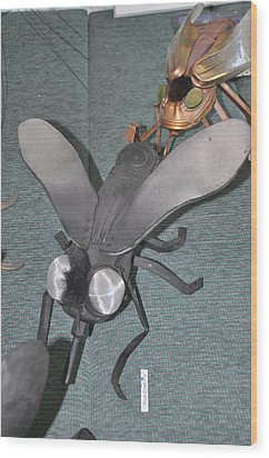 Blue Eyed Black Fly Wood Print by Michael Jude Russo