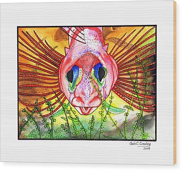 Blue-eyed Triple Fin Wood Print by Chris Crowley