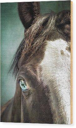 Blue Eyes Wood Print by Debby Herold