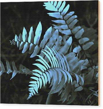 Blue Fern Wood Print by Susanne Van Hulst