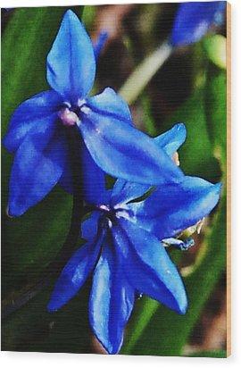 Blue Floral Wood Print by David Lane
