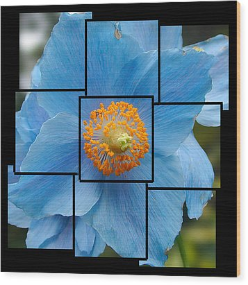 Blue Flower Photo Sculpture  Butchart Gardens  Victoria Bc Canada Wood Print by Michael Bessler