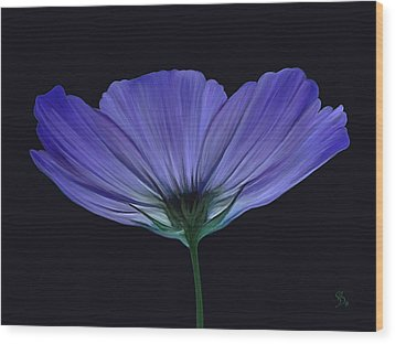 Blue Flower Wood Print by Sue  Brehant