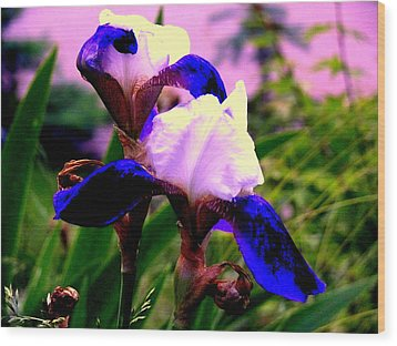 Blue Flowers Wood Print by Aron Chervin