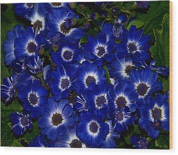 Blue Flowers Wood Print by Laura Allenby