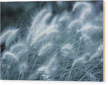 Blue Gras Wood Print by AugenWerk Susann Serfezi
