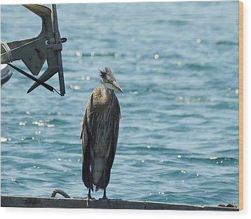 Blue Heron #1 Wood Print