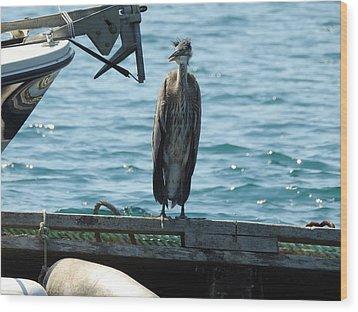 Blue Heron #2 Wood Print