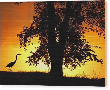 Blue Heron At Sunrise Wood Print by Sumoflam Photography