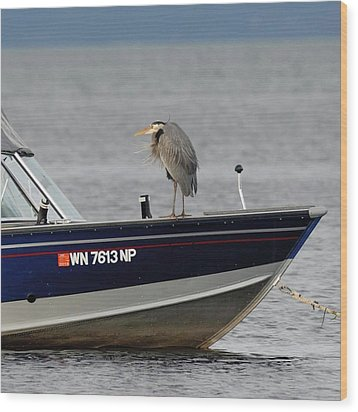 Blue Heron Boat Ride Wood Print