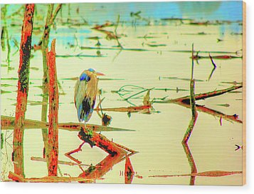 Wood Print featuring the photograph Blue Heron by Dale Stillman