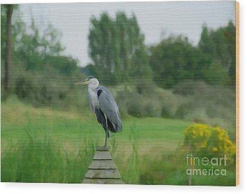 Blue Heron Wood Print by Jan Daniels