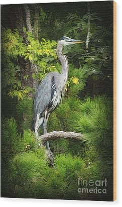 Wood Print featuring the photograph Blue Heron by Lydia Holly