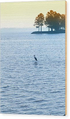 Blue Heron On The Chesapeake Wood Print by Bill Cannon