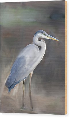 Blue Heron Painting  Wood Print