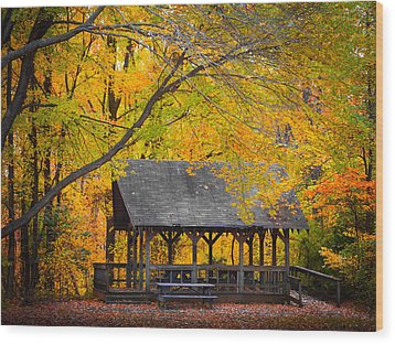 Blue Heron Park In The Fall 2 Wood Print