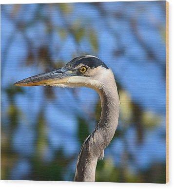 Blue Heron Profile Wood Print