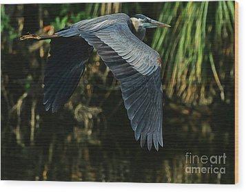 Wood Print featuring the photograph Blue Heron Series The Pond by Deborah Benoit