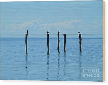 Wood Print featuring the photograph Blue Horizon by Stephen Mitchell