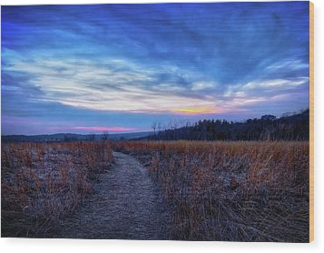 Blue Hour After Sunset At Retzer Nature Center Wood Print by Jennifer Rondinelli Reilly - Fine Art Photography