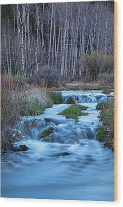 Blue Hour Streaming Wood Print by James BO Insogna