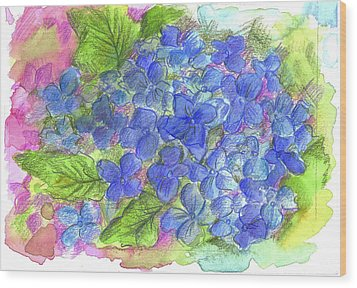 Wood Print featuring the painting Blue Hydrangea by Cathie Richardson