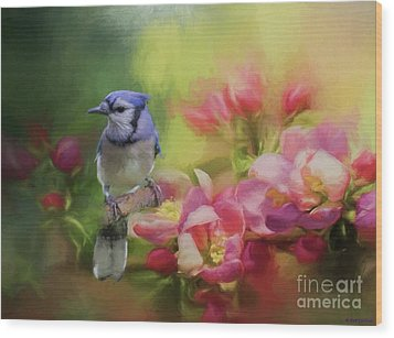 Blue Jay On A Blooming Tree Wood Print