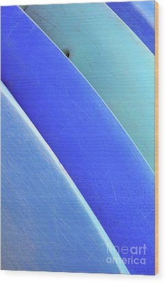 Blue Kayaks Wood Print by Brandon Tabiolo - Printscapes