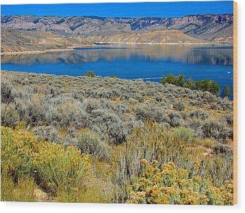 Blue Mesa Reservoir 1 Wood Print