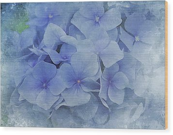 Blue Moments Wood Print by Elaine Manley