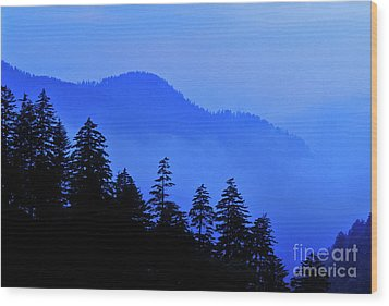 Wood Print featuring the photograph Blue Morning - Fs000064 by Daniel Dempster