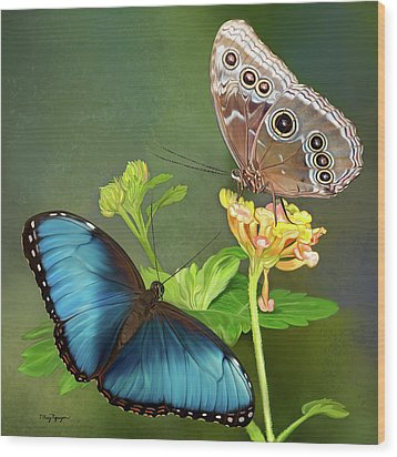 Blue Morpho  Butterflies Wood Print