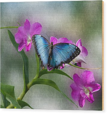 Blue Morpho With Orchids Wood Print