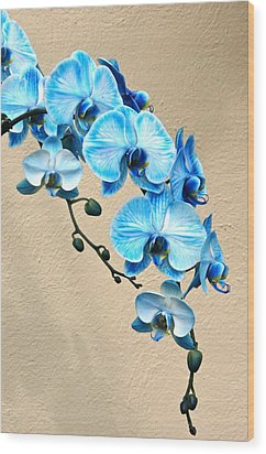 Blue Mystique Orchid Wood Print