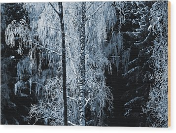 Blue Nature Winter Scenery Wood Print