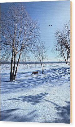 Wood Print featuring the photograph Blue On Blue by Phil Koch