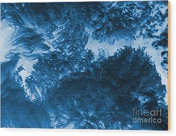 Blue Plants Wood Print by Kathleen Struckle